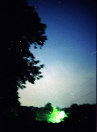 fireflies edited copy