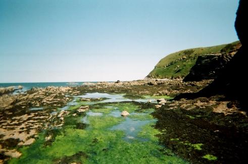 peays-bay-scotland-marsh-2009